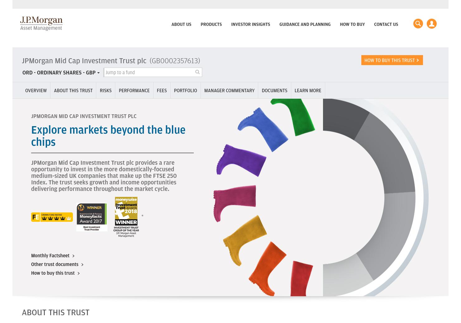 JPMorgan Mid Cap Home Page