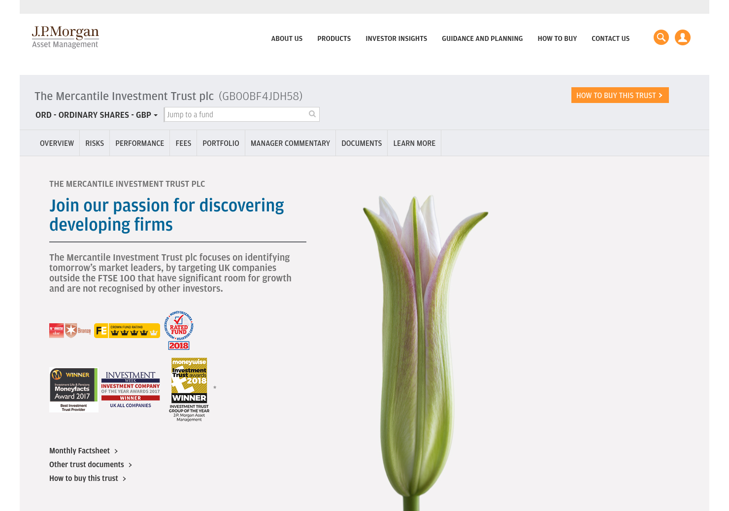 Mercantile Investment Trust PLC Home Page
