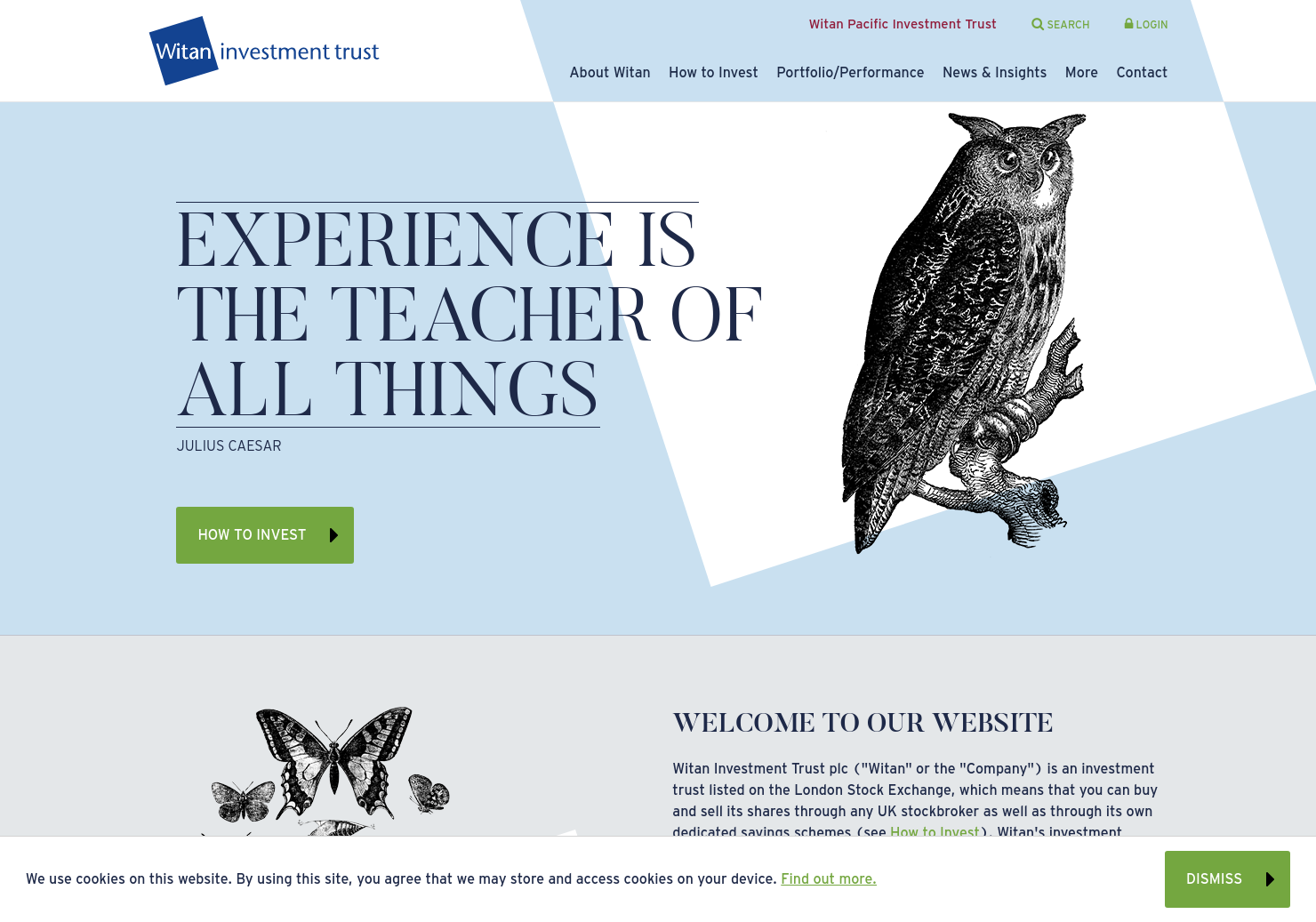 Witan Home Page